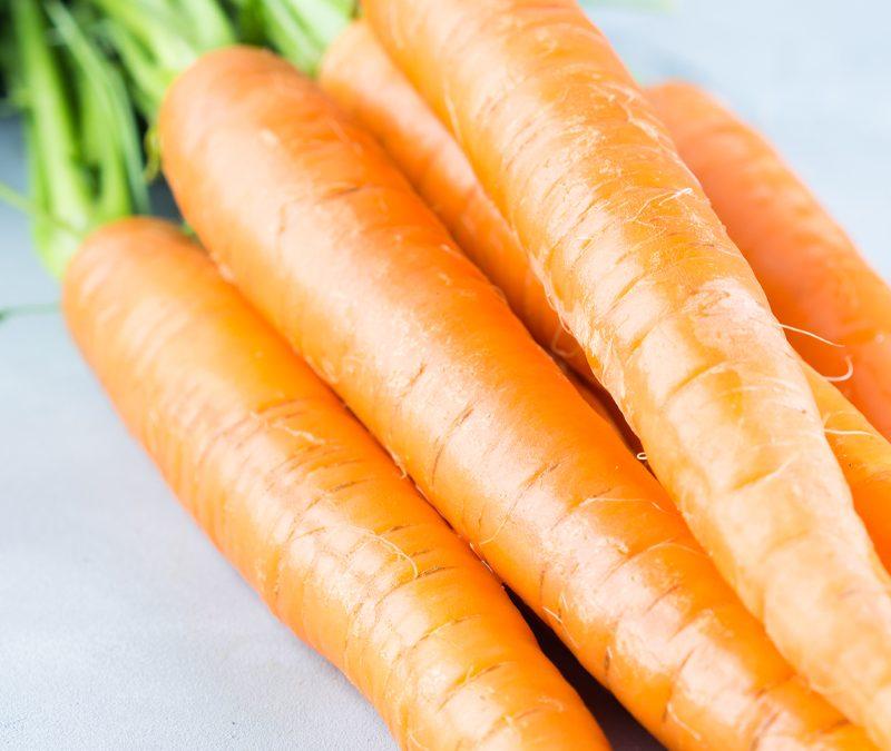 Zanahoria - Pedacito de Campo
